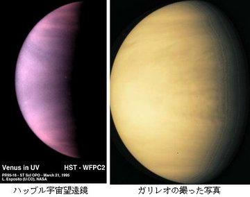 金星の画像.jpg