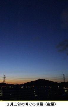 明けの明星.jpg